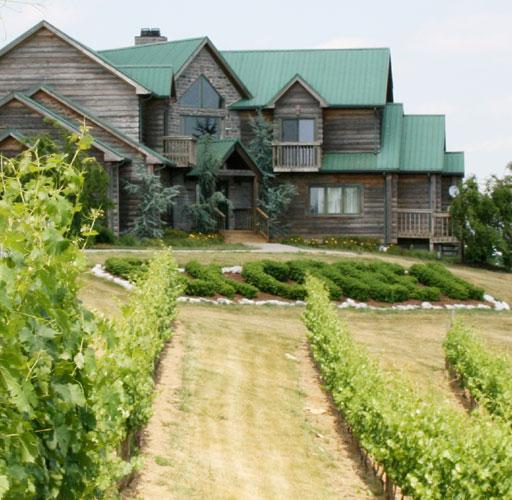 Photo courtesy of Elk Creek Vineyards