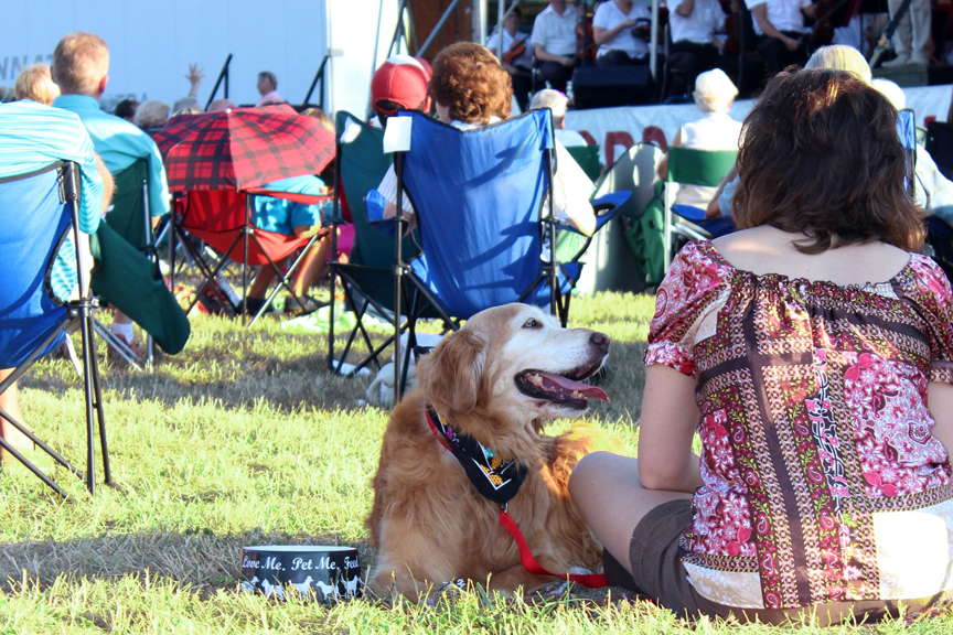 Dogs at Concerts in the Park Cincinnati